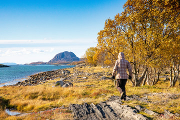 On a walk along the sea side in Brønnøy municipality, Northern Norway