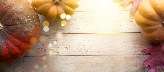 Fotomurales - autumn pumpkin harvest season background; thanksgiving holiday banner