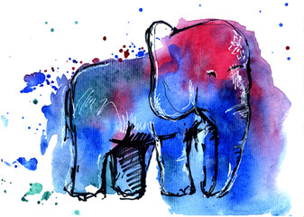 Watercolor elephant t-short printing