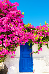 Traditional greek architecture and pink flowers on Santorini island, Greece.