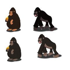 Gorilla - Collection - Cartoon Vector Image