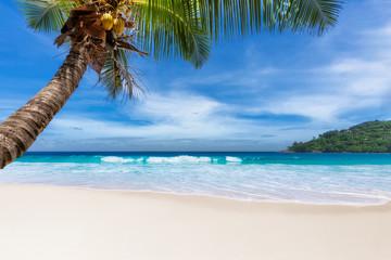 Paradise tropical Beach. Summer vacation and tropical beach concept.