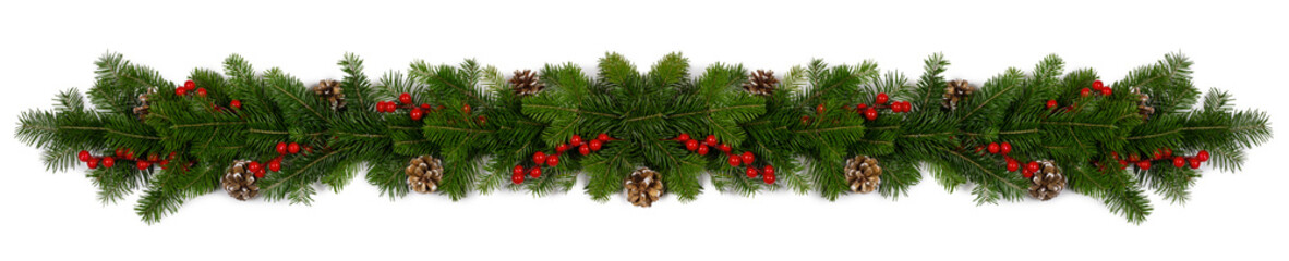 Christmas frame of tree branches