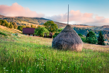 Fabulous morning scene of Rogojel village. Wonderful summer sunrise scene of Cluj County, Romania, Europe. Beauty of countryside concept background.