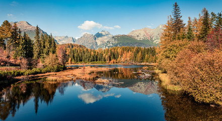 Aluminium Prints Mountains Colorful autumn panorama of Strbske pleso lake. Calm morning view of High Tatra National Park, Slovakia, Europe. Beauty of nature concept background..