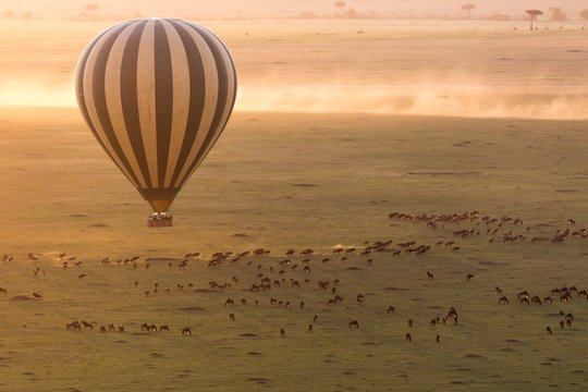 hot air ballon ride in Masai Mara