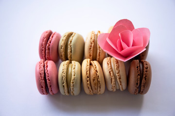 Colorful Macaroons with handmade paper flower