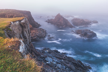 Cliffs of Cape St. Mary's Ecological Bird Sanctuary in Newfoundland