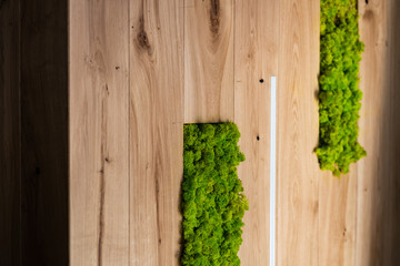 mech architektura- element zielony