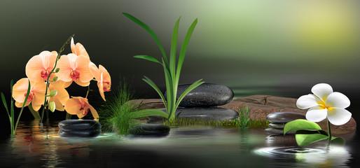 Fotorollo Orchideen Wandbild mit Orchideen, Gräser und Steinen im Wasser
