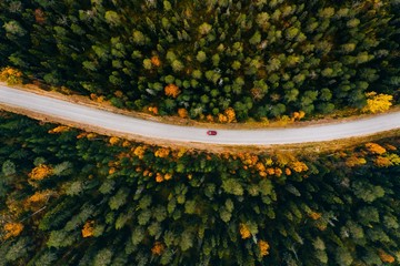Aerial view of rural road in yellow and orange autumn forest in rural Finland.