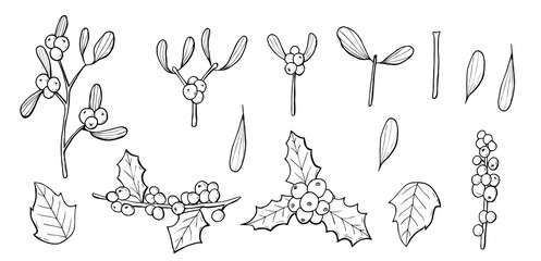 christmas set vector that consists of mistletoe and holly.