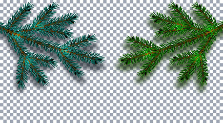 Christmas, New Year. Realistic Christmas tree branch in blue and green on a transparent background with shadow. Cards, business cards, invitations. illustration