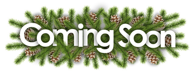 coming soon in christmas background : pine branchs