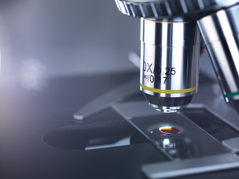 Human sample on a glass slide under a microscope in the laboratory