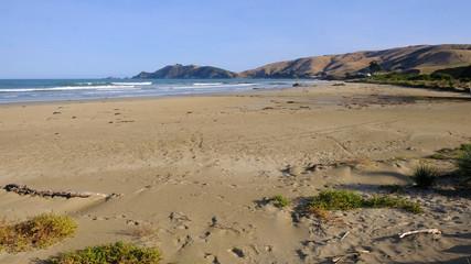 Kaka Point beach & Nugget Point peninsula, Catlins, Southland, New Zealand