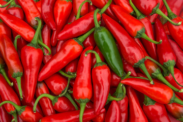 Large crop of hot chili peppers
