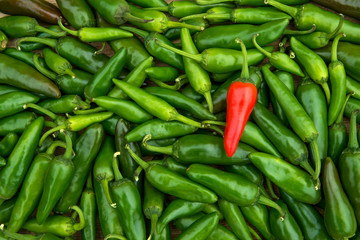 In de dag Hot chili peppers Large crop of red and green hot chili peppers