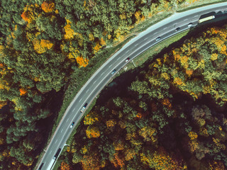 aerial view of autumn highway in forest