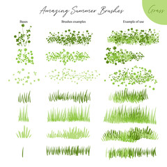 Set of summer vector grass ecology brushes - silhouettes of summer grass, flowers, different Earth greenery types isolated on white, vector illustration brush nature collection