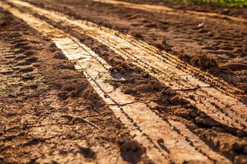 Wheel track on wet soil or mud Wall mural