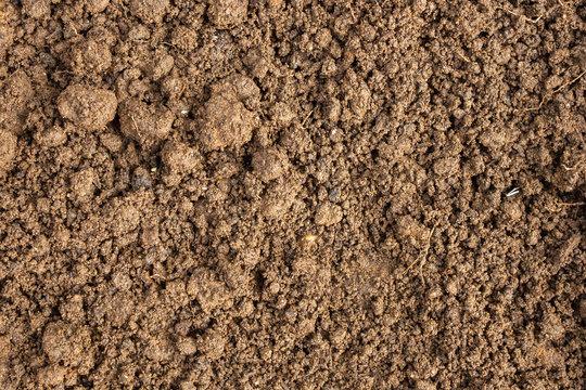 fertilizer dirt soil texture background