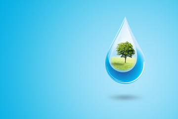 Ecology and Environmental Concept : Green trees in blue water drop falling to floor. Wall mural
