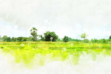 Foto auf AluDibond Weiß Abstract colorful shape on tree and field landscape in Thailand on watercolor illustration painting background.