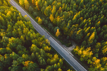 A road crossing a forest in autumn colors