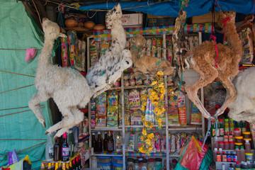 Wall Murals Lama Lama Angebot