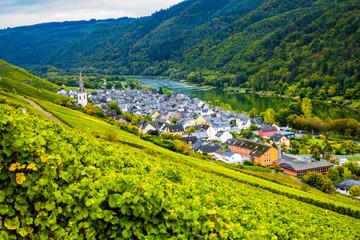 Mosel-Land: Wasser, Wald, Wein, Kirche, Dorf (Ortsteil Ediger)