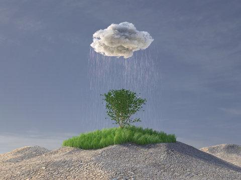 rain cloud watering a green tree in the desert