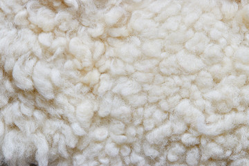 White soft wool background, natural sheepskin rug.