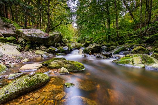 Wildbachklamm Buchberger Leite | Bayerischer Wald
