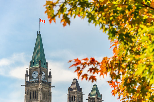 Canadian Parliament with Autumn Foliage