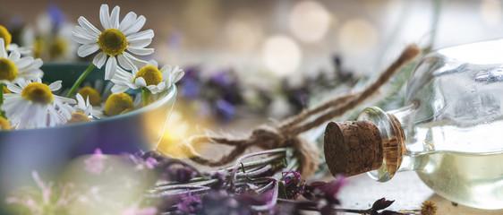 Hintergrund Fläschchen mit Korken und Heilpflanzen