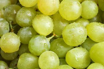 Fresh ripe juicy white grapes as background, closeup view Fototapete