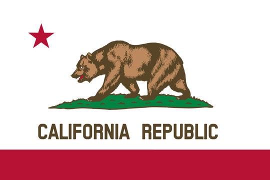 California flag. Simple flat vector illustration eps10