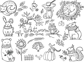 Set of doodle autumn animals isolated on white. Fox, bear, squirrel, hare, owl, cat, dog. Vector illustration. Perfect for coloring book, greeting card, print.