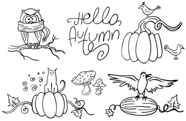 Set of doodle autumn animals and pumpkins isolated on white. Hello Autumn. Vector illustration. Perfect for coloring book, greeting card, print.