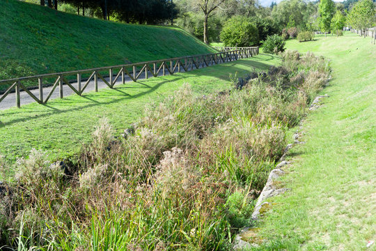 An irrigation drainage canal overgrown with reeds and vegetation in a wild park on a hillside