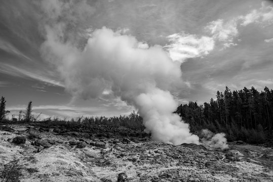 Geothermal feature at Norris geyser basin area at Yellowstone National Park (USA)