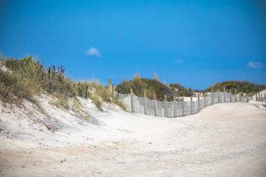 Sand Dunes at South Ocean Beach on Assateague Island