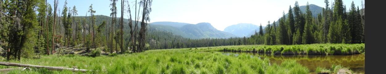 Foto op Plexiglas Pistache landscape with lake and forest