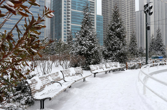 Christmas in Chicago. Modern architecture and cityscape background. Beautiful winter day in Chicago downtown. Scenic view in a city park with skyscrapers in at the background. Illinois, Midwest USA.
