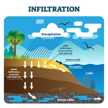 Infiltration vector illustration. Labeled natural precipitation water clean