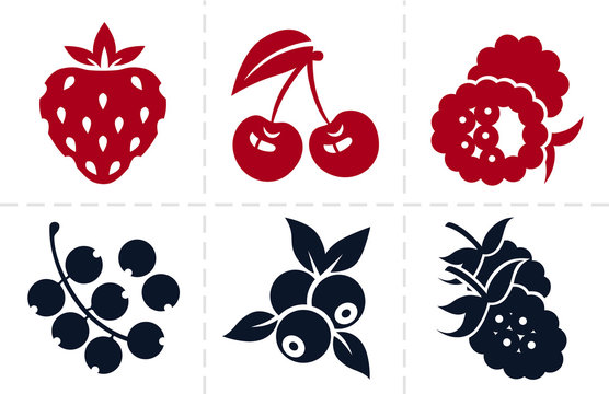 Berries icon set