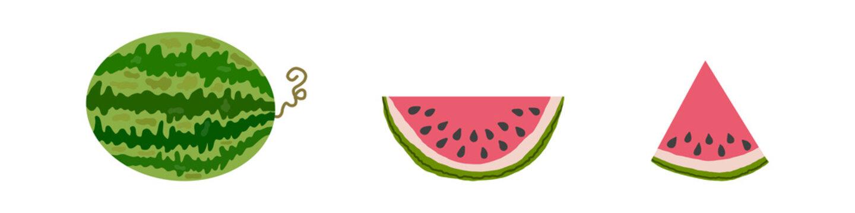 Vector watermelon set on white background.