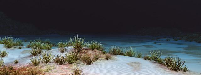 Unterwasser Landschaft mit Korallen