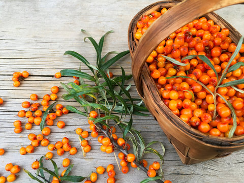 Sea-buckthorn or seaberry in wicker basket and ripe orange berries with green leaves on a wooden background. Healthy vitamin food. Rustic still life